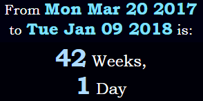 42 weeks, 1 day